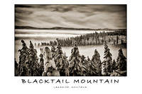 blacktail_mountain_2